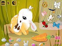 Bunny Buddy