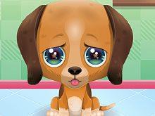 Cute Puppy Care Mobile